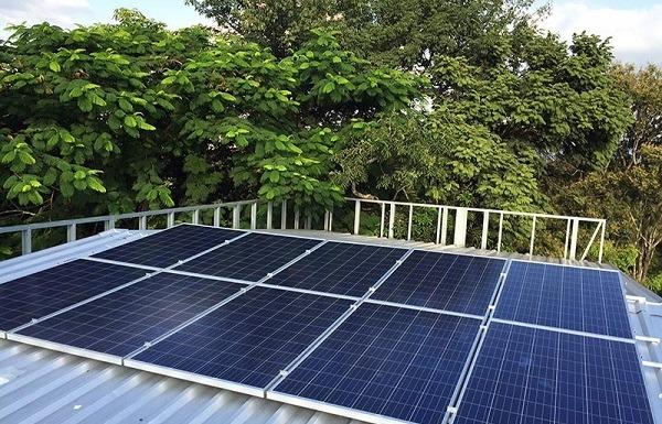 Los paneles solares deben estar libres de las ramas de los arboles que causen sombra